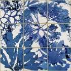 Algae in Blue from Accessories for the Home