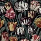 Tulips Dark Wallpaper from Accessories for the Home