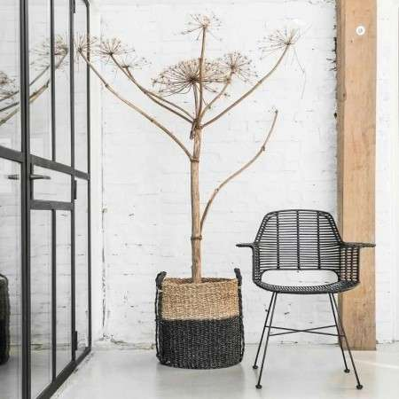 Rattan Tub Chair in a Black Finish