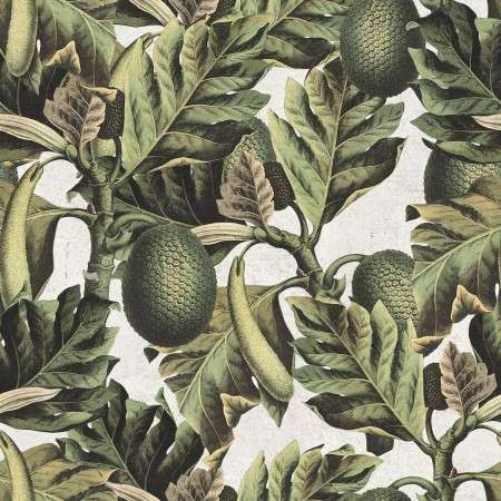 Exotic Fruit 1 from Accessories for the Home