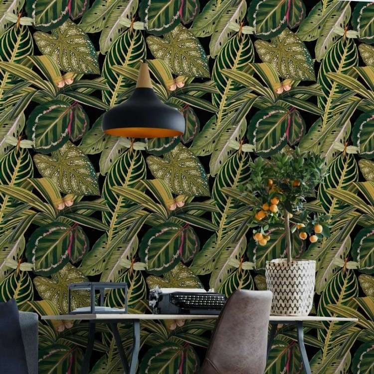 Mind the Gap Amazonia from Accessories for the Home