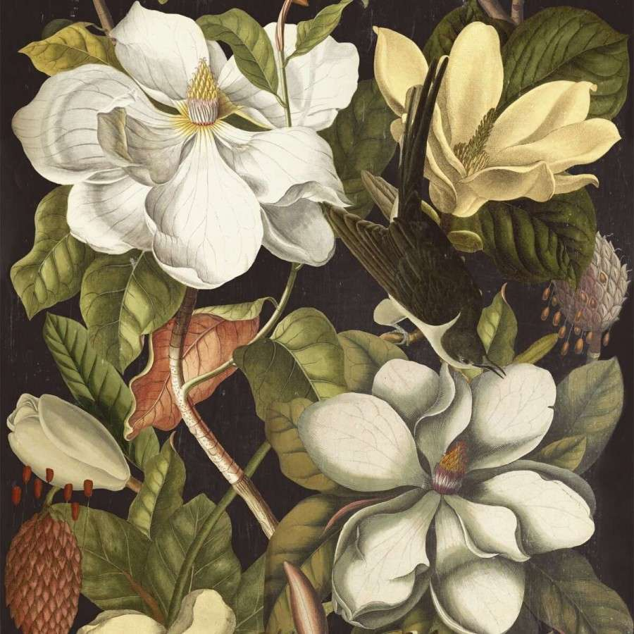 Magnolia Wallpaper From Accessories For The Home