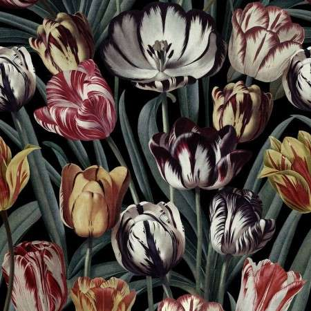 Mind The Gap Tulipa Dark Wallpaper from Accessories for the Home