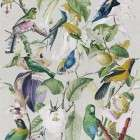 Mind The Gap Tropical Birds Wallpaper from Accessories for the Home