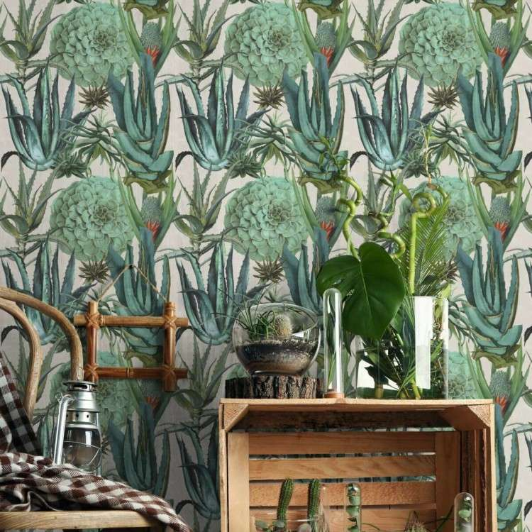 Mind The Gap Succulentus Wallpaper from Accessories for the Home
