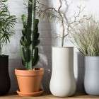Blob Large Vase from Accessories for the Home