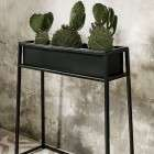Black Iron Plant Stands from Accessories for the Home