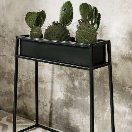 Nordal Black Iron Plant Stands in Various Sizes