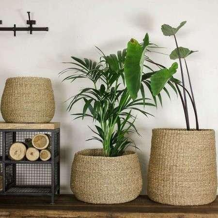 Seagrass Tapered Storage Baskets/Planters
