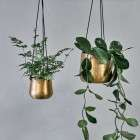 Atsu Brass Hanging Metal Planters from Accessories for the Home